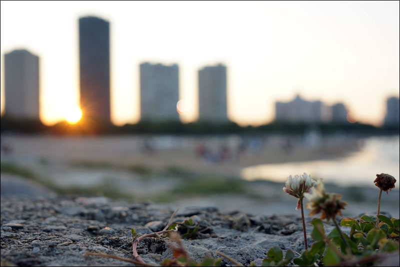 the sun sets on Chicago's Foster Avenue Beach