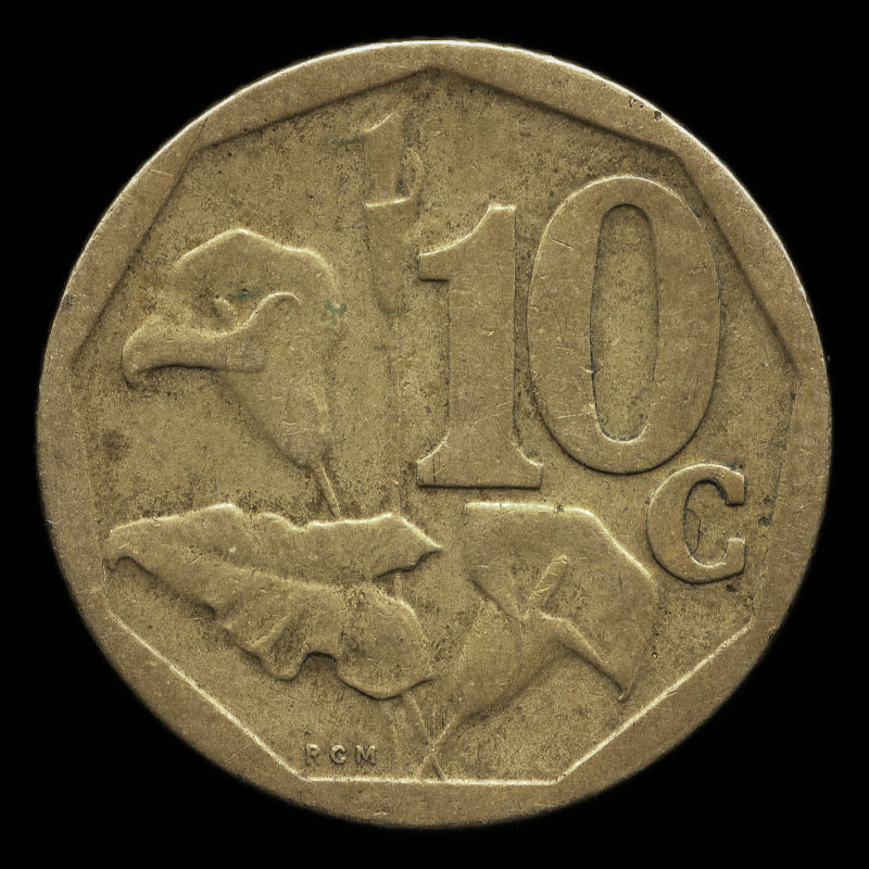 a South African 10 cent coin featuring the South African coat of arms on one side and arum lilies on the other