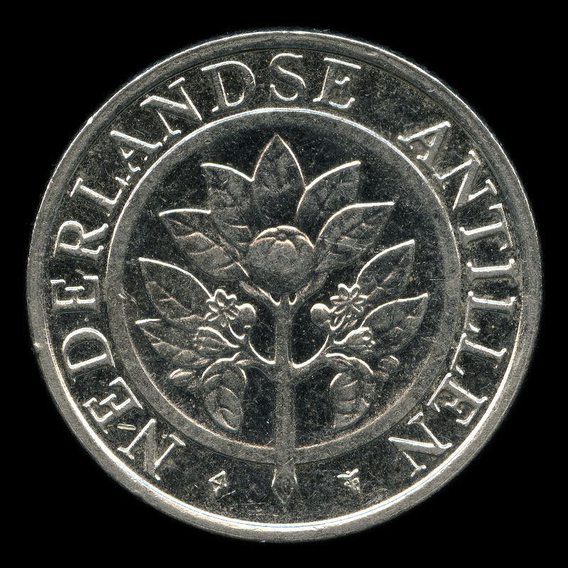 a 25 cent coin from the Netherlands Antilles featuring an orange blossom